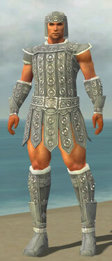 Warrior Ascalon Armor M gray front