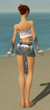 Elementalist Iceforged Armor F gray arms legs back