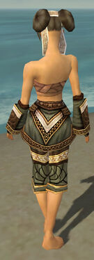 Monk Elite Canthan Armor F gray arms legs back