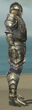 Warrior Templar Armor M gray side