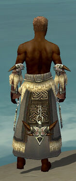 Dervish Norn Armor M gray arms legs back