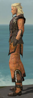 Elementalist Sunspear Armor M dyed side