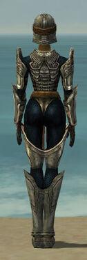 Warrior Sunspear Armor F gray back