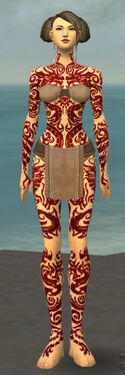 Monk Dragon Armor F dyed front