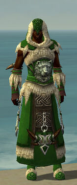 Dervish Norn Armor M dyed front