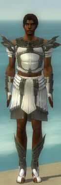 Paragon Ancient Armor M gray front