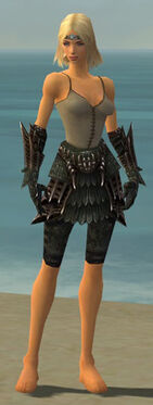 Warrior Elite Dragon Armor F gray arms legs front