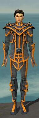 Elementalist Krytan Armor M dyed front