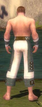 Monk Elite Saintly Armor M gray arms legs back