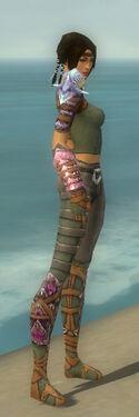 Ranger Drakescale Armor F gray side