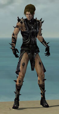 Necromancer Obsidian Armor M dyed front