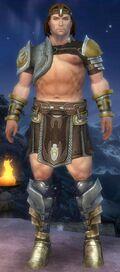 Poki The Warrior