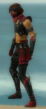 Assassin Luxon Armor M dyed side