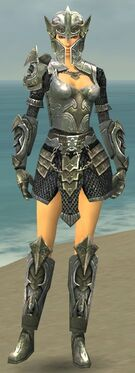 Warrior Elite Templar Armor F gray front