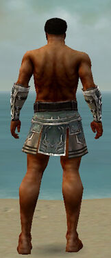 Warrior Istani Armor M gray arms legs back