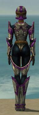 Warrior Sunspear Armor F dyed back