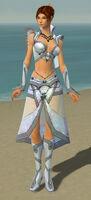 Elementalist Krytan Armor F gray front