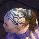 Monk Elite Canthan Armor M gray head side