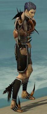Necromancer Ancient Armor M gray side