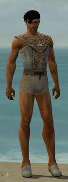 Dervish Vabbian Armor M gray chest feet front
