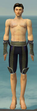 Elementalist Canthan Armor M gray arms legs front