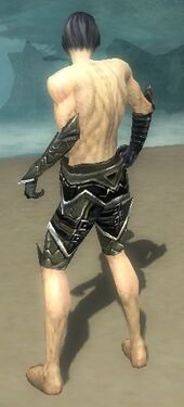 Necromancer Elite Profane Armor M gray arms legs back