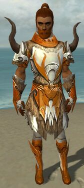 Paragon Norn Armor M dyed front