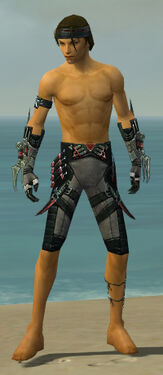 Assassin Elite Canthan Armor M gray arms legs front
