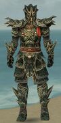 Warrior Elite Luxon Armor M gray front