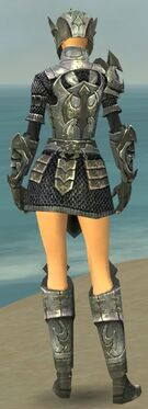 Warrior Elite Templar Armor F gray back