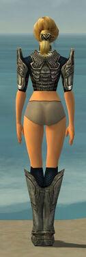 Warrior Sunspear Armor F gray chest feet back