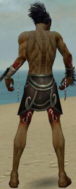 Necromancer Sunspear Armor M gray arms legs back