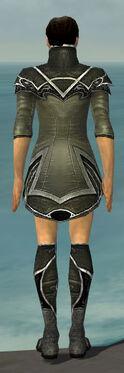 Elementalist Shing Jea Armor M gray chest feet back