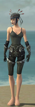 Necromancer Tyrian Armor F gray arms legs front