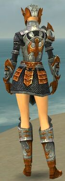 Warrior Elite Templar Armor F dyed back