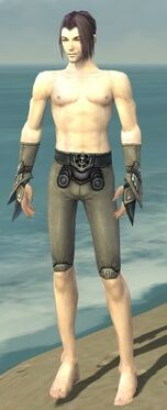 Elementalist Asuran Armor M gray arms legs front