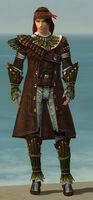 Ranger Druid Armor M gray front