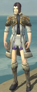 Elementalist Norn Armor M gray chest feet front