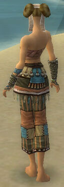 Monk Luxon Armor F gray arms legs back