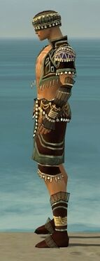 Ritualist Vabbian Armor M gray side