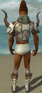 Paragon Norn Armor M gray chest feet back
