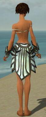 Paragon Primeval Armor F gray arms legs back
