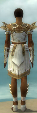 Paragon Ancient Armor M dyed back
