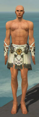 Paragon Sunspear Armor M gray arms legs front