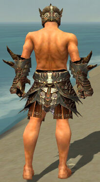 Warrior Monument Armor M gray arms legs back