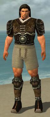 Warrior Shing Jea Armor M gray chest feet back