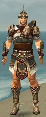 Warrior Vabbian Armor M gray front