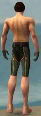 Mesmer Asuran Armor M gray arms legs back
