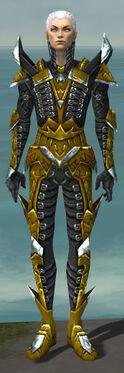 Necromancer Profane Armor M dyed front