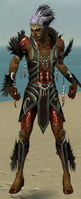 Necromancer Sunspear Armor M gray front